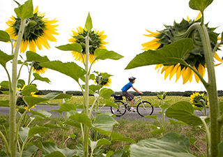 Backroads Family Loire Valley Biking trips